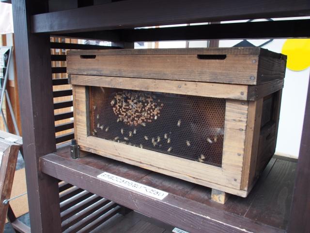 養蜂業のM&A/会社売却