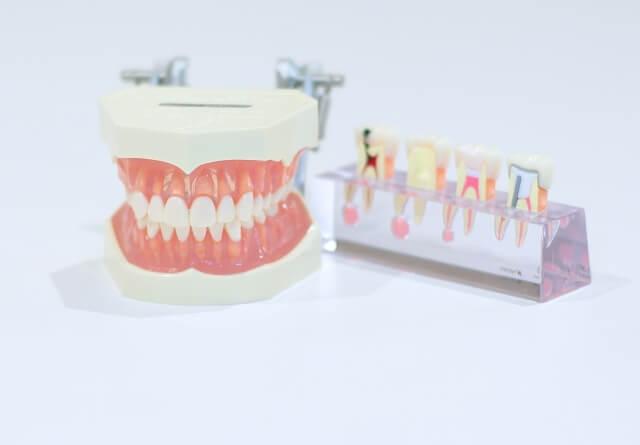 歯科医院のM&A/会社売却の写真